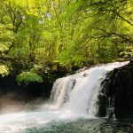 涼を求めて蓼科大滝